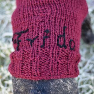 Strickpulli Frida DIY